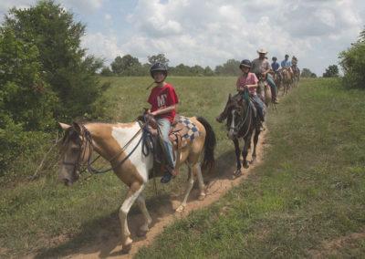 VR_horseback